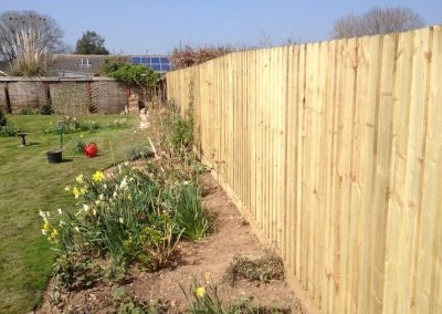 New featheredge fencing in Stoke Canon