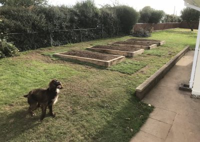 Oak sleeper raised beds – nr Exeter