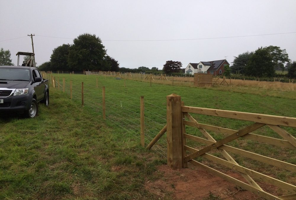 Sheep Paddocks and Handling System – Exe Valley, Exeter