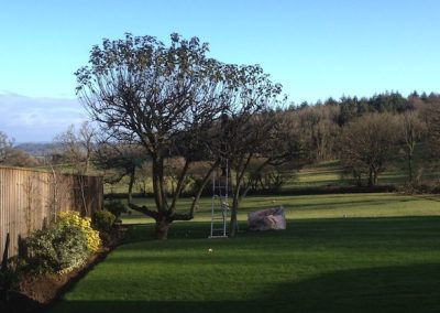 The season for apple tree pruning